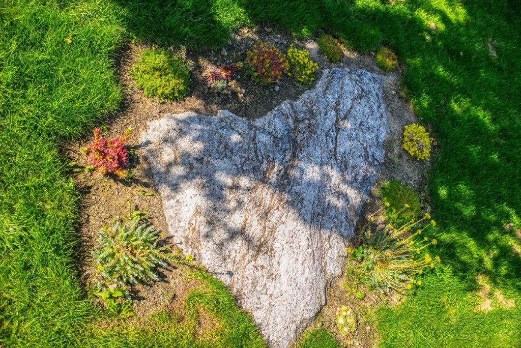 28 bästa bilderna på trädgård